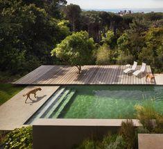 Questa potrebbe essere una idea per la piscina!