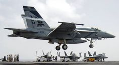 vfa-143 pukin dogs strike fighter squadron f/a-18e super hornet carrier air wing cvw-7 uss dwight d. eisenhower cvn 69