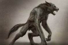 Now that's what a werewolf should look like!