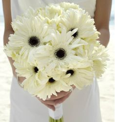 Bride's Paradise Posy (A chic bouquet in your choice of Gerbera Daisies or Roses) in your chosen palette http://www.palladiumweddings.com/en/package/pvr-pureparadise-2014/