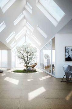 Not Just One Skylight, But Like, Twenty, plus the indoor tree with hammock