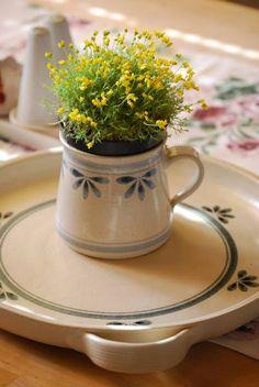 Rychlý koláč s ovocem Kettle, Kitchen Appliances, Diy Kitchen Appliances, Tea Pot, Home Appliances, Boiler, Kitchen Gadgets