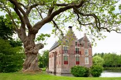 *Historic Stuff: Castle Vosbergen, Heerde, Gelderland. klaskedejong.wordpress.com