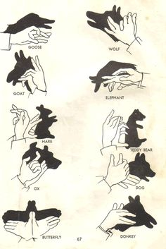 old school hand puppet guide - we need this for our shadow puppet show! :)