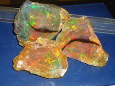 1500ct brilliant crystal welo opal rough parcel