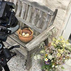 Egna ägg från hönorna på Gotlandsgården! Kan det bli bättre? Reportage till nästa sommar. @fotografforster @camillafurst #gotland #alltihemmet #sommar #inredning #idyllic #styling #ägg #blommor #flower Firewood, Picnic, Basket, Texture, Crafts, Outdoor, Surface Finish, Outdoors, Woodburning