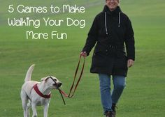 Check out these fun games & tricks to make walking your dog a little more exciting for both of you!