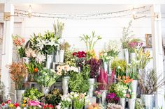 Time to pick out some flowers! We love to look at the colorful and bright pictures of Ampersand's Shop in San Francisco. Any of these would make your tablescape stand out.