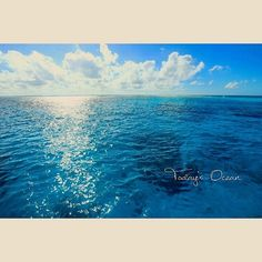 【chiipictures】さんのInstagramをピンしています。 《Today's Ocean  Good morning ! on the boat ! the calm and shining ocean ♡  I'm back to the home ocean ! #KeramaIslands in #Okinawa.  ボートの上からおはよー!  今日は台風直前の夏みたいな凪! 朝日で海キラッキラ☆  慶良間ダイビングへ! 私のホーム。ただいまー♡  #Beach #sunrise #morning #sky #surf #sea #ocean #surfing #scubadiving #beachlife #Byronbay #Australia #Japan #ビーチ #朝 #朝日 #日本 #空 #ビーチライフ #バイロンベイ #波 #海 #サーフィン #ダイビング #オーストラリア #沖縄 #慶良間諸島》