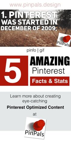 5 Amazing Pinterest Facts & Stats. Information Gif made by PinPals. Visit us at www.pinpals.design to have us make a pinfo gif for you!