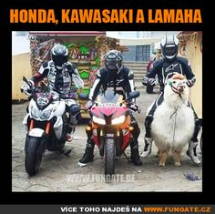 Really funny Kawa or Honda who will win? Just to laugh - Kawa, Honda … I think they are much more advanced in India than the new Lamaha hier here - Funny Cute, Haha Funny, Really Funny, Funny Jokes, Hilarious, Bike Humor, Motorcycle Humor, Man Humor, Funny Images