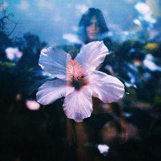 Nature, Flowers, Plants, Photography, Inspiration, Gaia, Instagram, Dreams, Biblical Inspiration