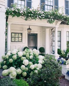 Absolute dream  look at those hydrangeas