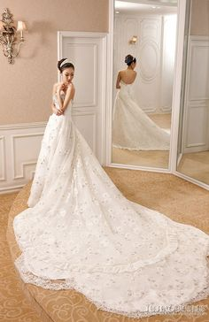 Wedding dress w/ fantastic train
