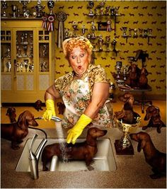 I love theses images from one of favorites photographers Erwin Olaf. Got to get some dachshund wallpaper or at least some doggie kitchen accessories. image via: erwin olaf Erwin Olaf, Vintage Dachshund, Dachshund Art, Daschund, Dachshund Puppies, Crazy Cat Lady, Crazy Cats, Crazy Dog, Dog Love