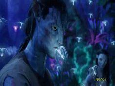 cuervo57: avatar gif 58