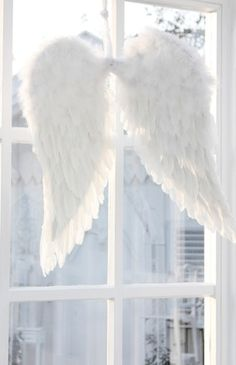 Angel wings I wish s