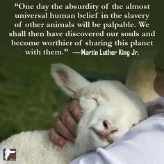 Animal slavery unpalatable.