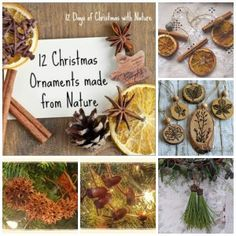 "On the twelfth day of Christmas, mother nature gave to me….. 12 Homemade Christmas Tree ornaments crafted from nature! I admit that I am on a mission to destroy purchased Christmas ornaments. The popularity of my post, ""14 Christmas decorations made from Recycled Continue reading →"