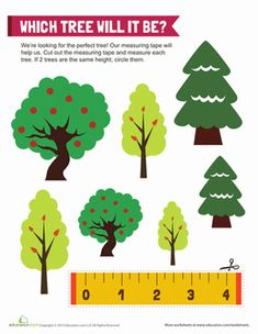 1000 images about tree unit on pinterest apple tree worksheets and seasons. Black Bedroom Furniture Sets. Home Design Ideas