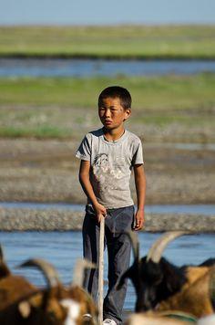 Herder boy and goats, nomadic life, Mongolia
