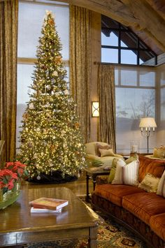 Christmas Wow, Tall Tree, Tall Windows, Tall Ceilings