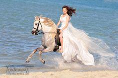 Braut auf einem weißen Araber am Strand im Galopp