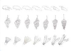ID Yr1 / Design Fundamentals / 2D Metamorphosis on Behance