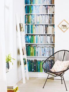 Erst eine Bücherwand macht Wohnräume so richtig gemütlich. Und diese hier müssen Sie nicht mal abstauben!