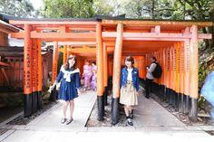 Wanna go again, the No. 1 popular sightseeing spot in Kyoto ♡ Fushimi Inari Shrine @ Kyoto travel Stay at Mitsui Garden Hotel Kyoto Shinmachi Bettei in Kyoto  #kyoto #japan #japankuru #cooljapan #mitsuigarden #hotel #shinmachi #kingakuji #shrine #torii #fushimiinari