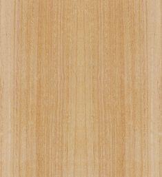 Eucalyptus Laminat, Tapeten, Architektur, Bilder, Bodenbeschaffenheit,  Essecken Sets, Musik Finden