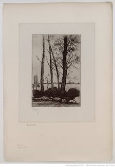 [Quatre arbres] : [estampe] / Lepic