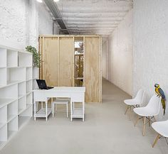Projects: Veterinary clinic for exotic animals Cafe Japan, Best Interior, Interior Design, Pet Clinic, Animal Clinic, Office Workspace, Exotic Pets, Exotic Animals, Commercial Design