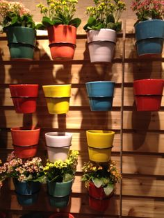Planters at Crate & Barrel