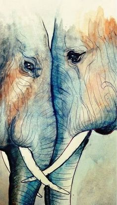 """radiantoptimism: """" I felt like messing around with watercolors some. Began with a simple ballpoint pen sketch in my Moleskine and painted over it. They look like they love each other to drawing elephant Art And Illustration, Elephant Illustration, Art Inspo, Art Amour, Ouvrages D'art, Elephant Love, Water Color Elephant, Art Design, Love Art"""