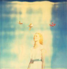 Hayley Birds Fotógrafa: Stefanie Schneider