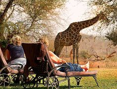 Mohlabetsi Safari Lodge | in South Africa, Limpopo, Near Kruger National Park, Kruger National Park, Hoedspruit, Balule Nature Reserve