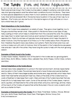 taiga biome facts and information homeschool science pinterest biomes homeschool and school. Black Bedroom Furniture Sets. Home Design Ideas