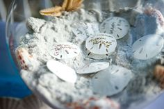 sand dollars.....have every guest write their name on one and put it in a bowl, great alturnitive to a guest book for a beach wedding