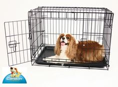 Compact Double Door Fold and Go Wire Crate on sale @Coupaw (ALL SIZES)
