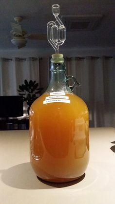 Kerry's Magnificent Mango Wine Recipe (no sulfites added!)