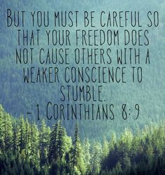 What is the freedom that you have can cause others to stumble?