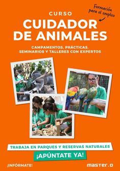 Cover, Books, Movie Posters, Caregiver, Renewable Energy, Natural Playgrounds, Animales, Libros, Book