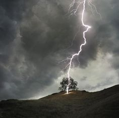 Funny pictures about Never stand under a tree during a storm. Oh, and cool pics about Never stand under a tree during a storm. Also, Never stand under a tree during a storm photos. Fuerza Natural, La Ilaha Illallah, Thunder And Lightning, Lightning Bolt, Lightning Storms, Nature Sauvage, Wild Weather, Lone Tree, Single Tree