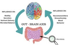 The Gut-Brain Connection: It's Not All in Your Head - The Gut-Brain Axis is a fascinating area of research - learn how your gut affects your mood, and how your brain affects your gut. Gut Brain, Brain Health, Gut Health, Mental Health, Health Fair, Public Health, Health Tips, Colon Irritable, Irritable Bowel Syndrome