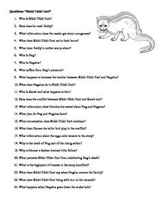Rikki tikki tavi test and reading questions comprehension rikki tikki tavi questions and key fandeluxe Choice Image