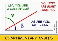 Complimentary Angles (alternate) - Spiked Math Comic - A daily math webcomic meant to entertain and humor the geek in you. Funny Math Jokes, Math Memes, Math Puns, Class Memes, Hilarious, Funny Pics, Funny Stuff, Funny Memes, Classroom Humor