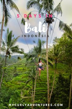 5 Day Ubud Itinerary - My Curly Adventures Bali Travel Guide, Asia Travel, Solo Travel, Travel Tips, Travel Guides, Ubud, Cool Places To Visit, Places To Travel, Amazing Destinations