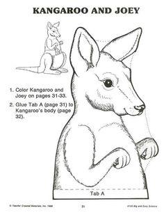 Kangaroo & Joey 3/3