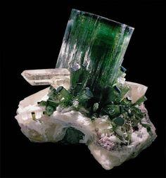 Verdelite (A green variety of Tourmaline ), quartz, albite and lepidolite your  Cruzeiro Mine, Serra de Safira, Santa Maria do Suacui, Minas Gerais, Brasile.  270x250 mm